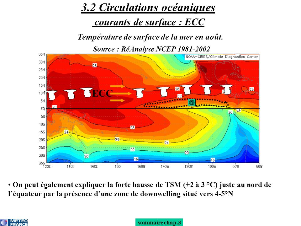 3.2 Circulations océaniques courants de surface : ECC