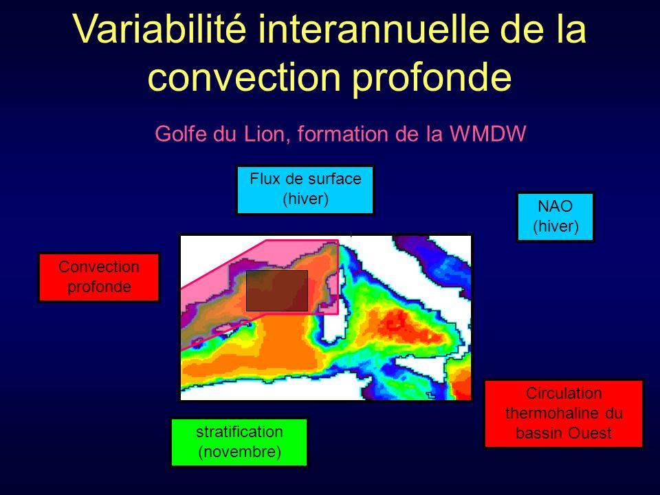 Variabilité interannuelle de la convection profonde