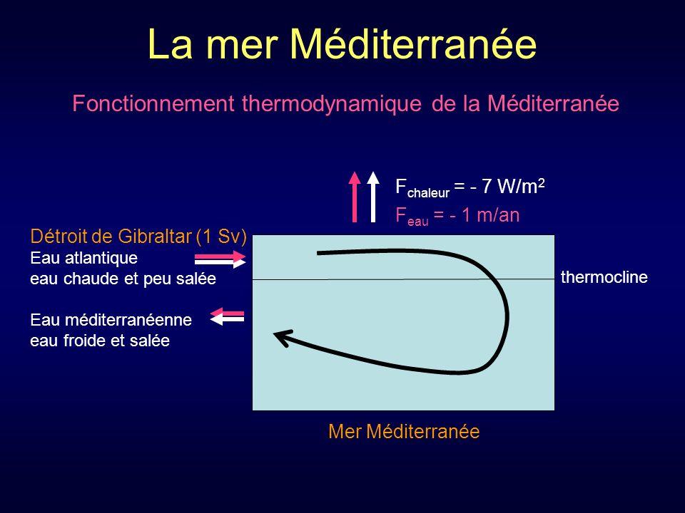 Fonctionnement thermodynamique de la Méditerranée