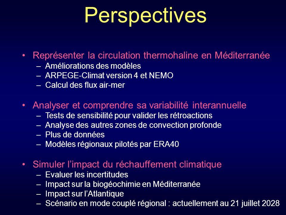 Perspectives Représenter la circulation thermohaline en Méditerranée