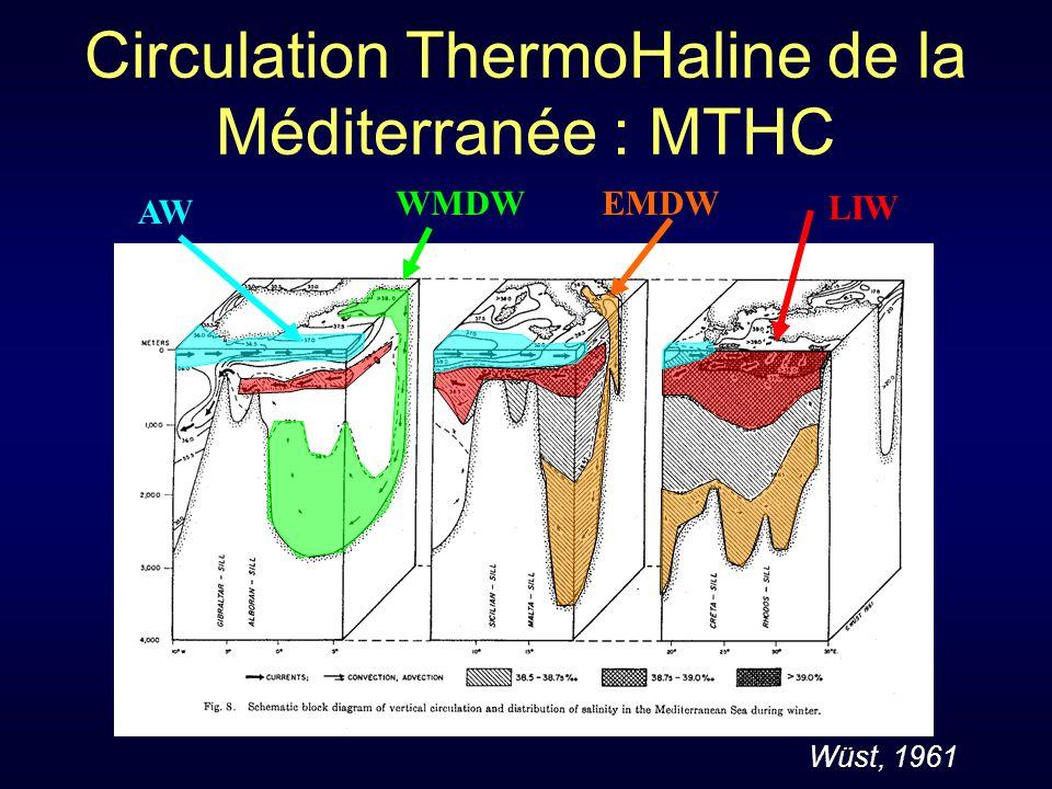 Circulation ThermoHaline de la Méditerranée : MTHC