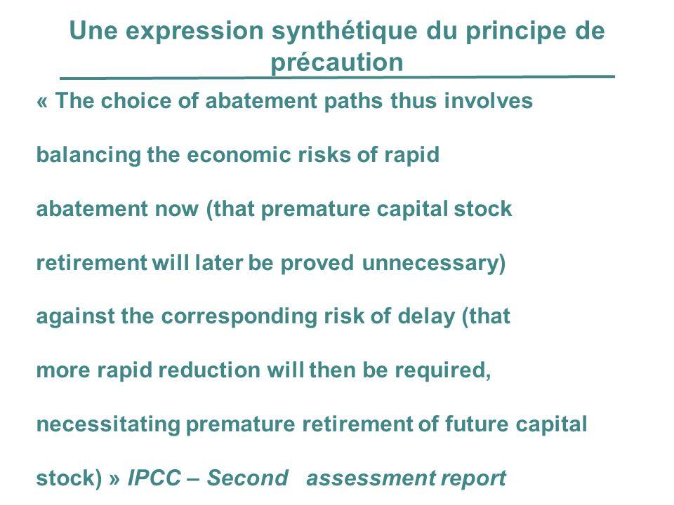 Une expression synthétique du principe de précaution
