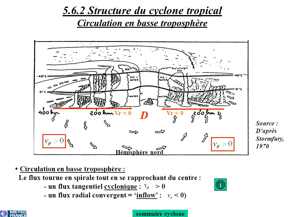 5.6.2 Structure du cyclone tropical Circulation en basse troposphère