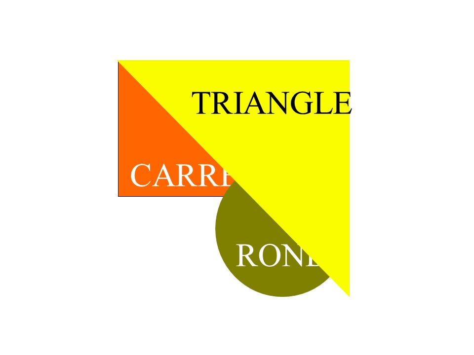 TRIANGLE CARRE ROND TRANSITION BALAYAGE. PREMIER PLAN / ARRIERE PLAN