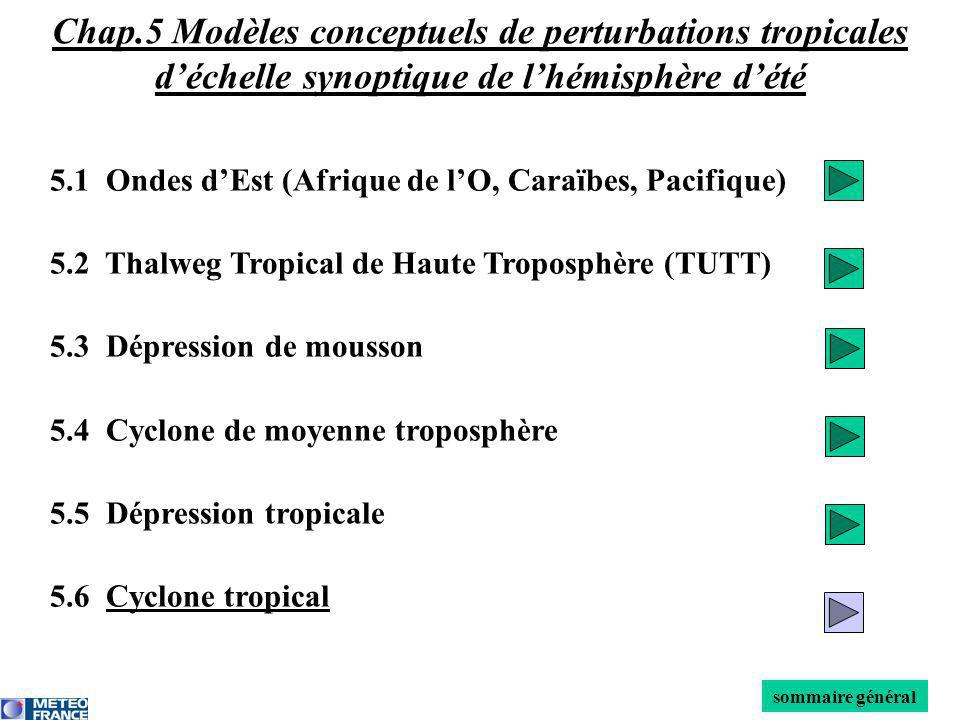 Chap.5 Modèles conceptuels de perturbations tropicales d'échelle synoptique de l'hémisphère d'été