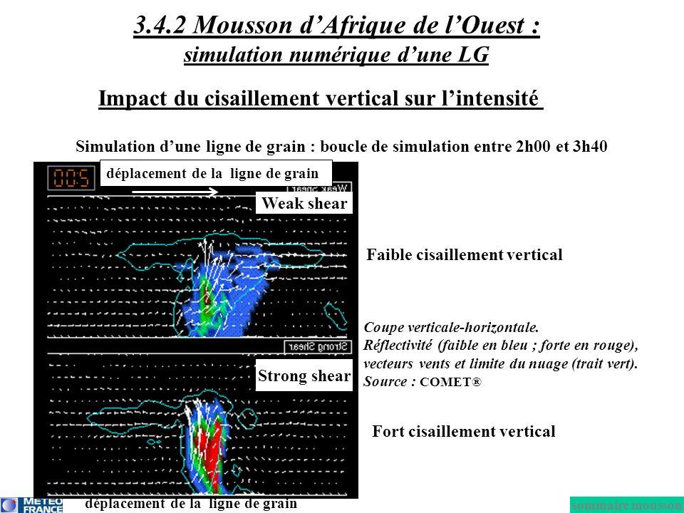 3.4.2 Mousson d'Afrique de l'Ouest : simulation numérique d'une LG