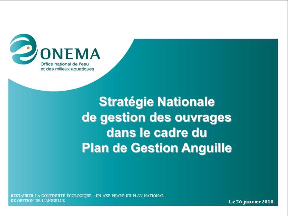Stratégie Nationale de gestion des ouvrages dans le cadre du Plan de Gestion Anguille