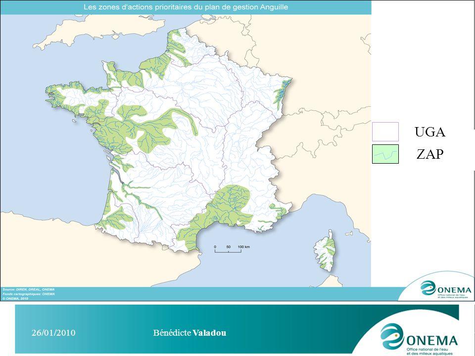 UGA ZAP 26/01/2010 Bénédicte Valadou