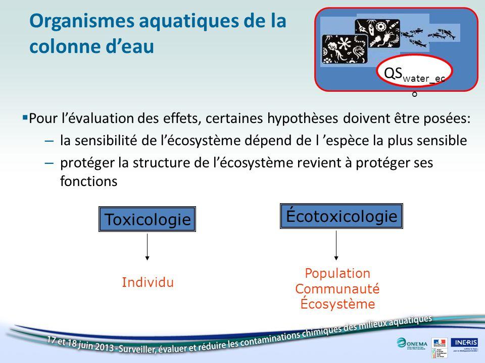 Organismes aquatiques de la colonne d'eau