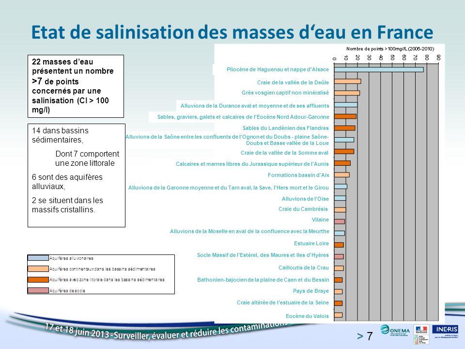 Etat de salinisation des masses d'eau en France