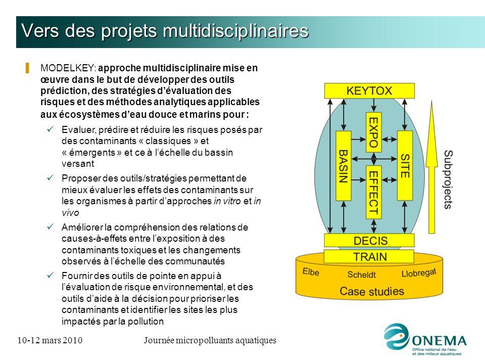 Vers des projets multidisciplinaires