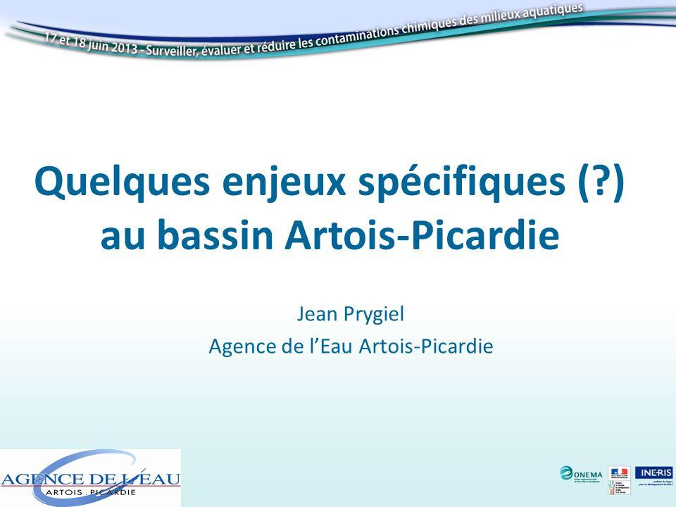 Quelques enjeux spécifiques ( ) au bassin Artois-Picardie