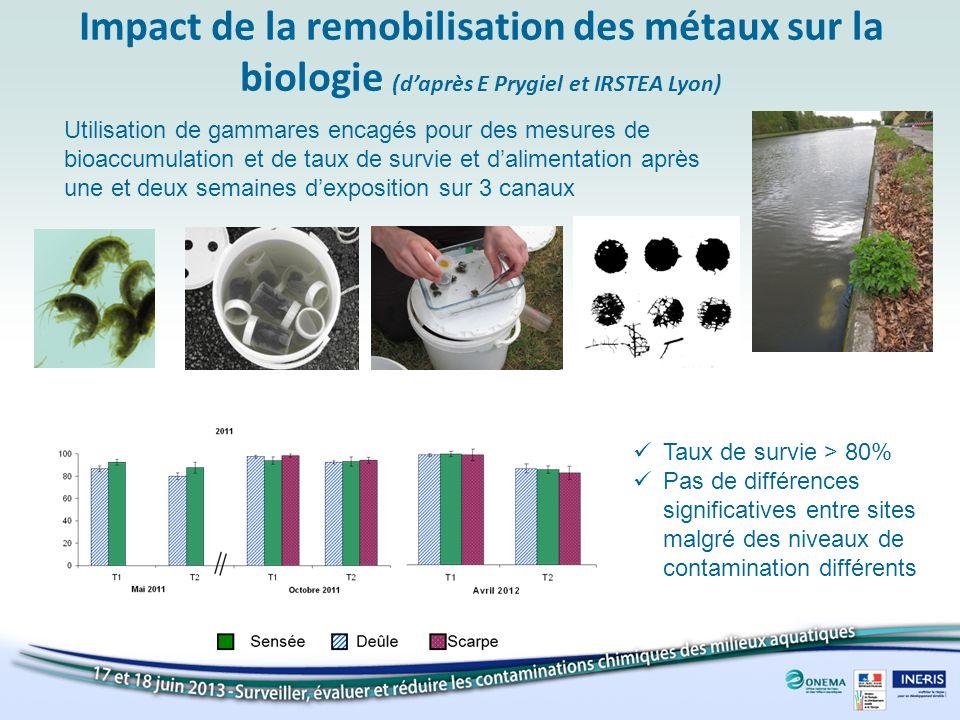 Impact de la remobilisation des métaux sur la biologie (d'après E Prygiel et IRSTEA Lyon)