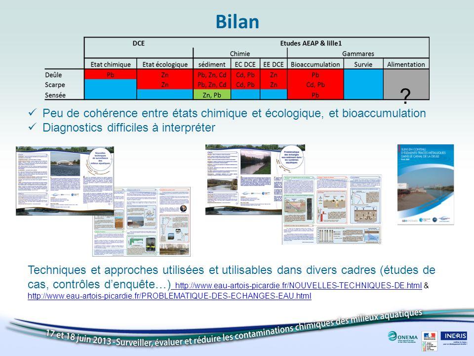 Bilan Peu de cohérence entre états chimique et écologique, et bioaccumulation. Diagnostics difficiles à interpréter.