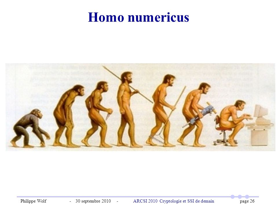Homo numericus