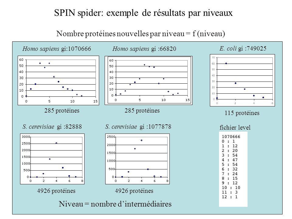 SPIN spider: exemple de résultats par niveaux