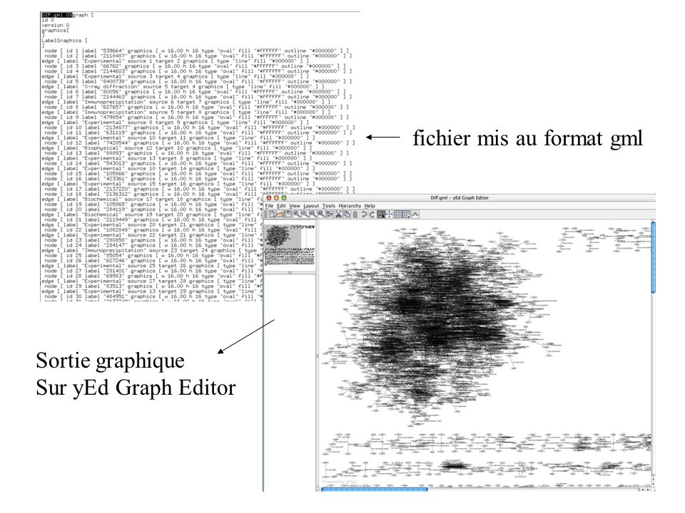 fichier mis au format gml