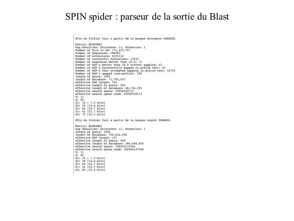 SPIN spider : parseur de la sortie du Blast