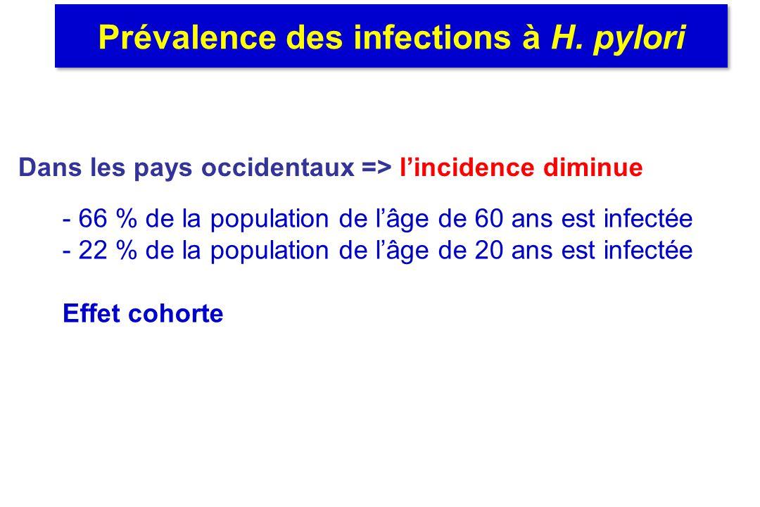 Prévalence des infections à H. pylori