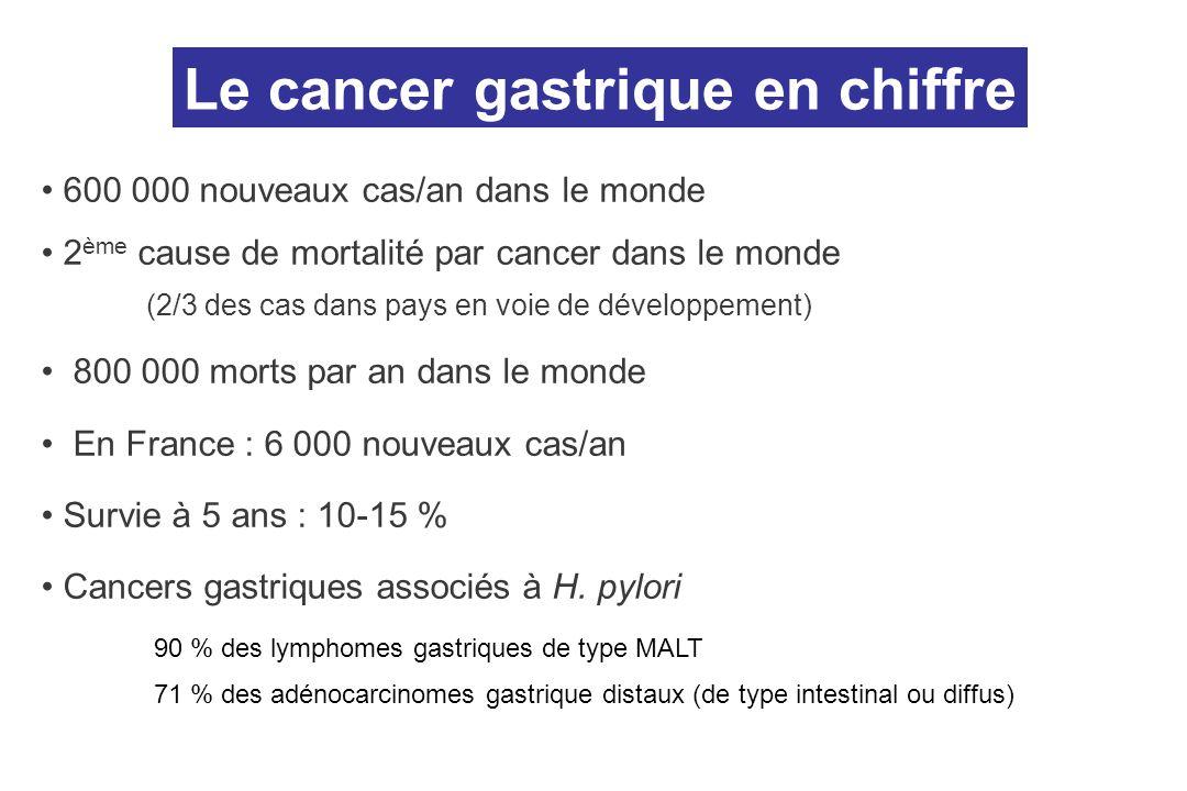 Le cancer gastrique en chiffre
