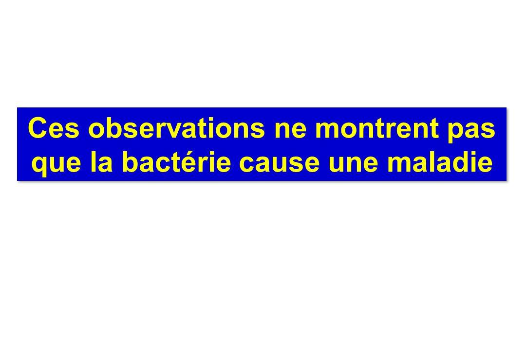 Ces observations ne montrent pas que la bactérie cause une maladie