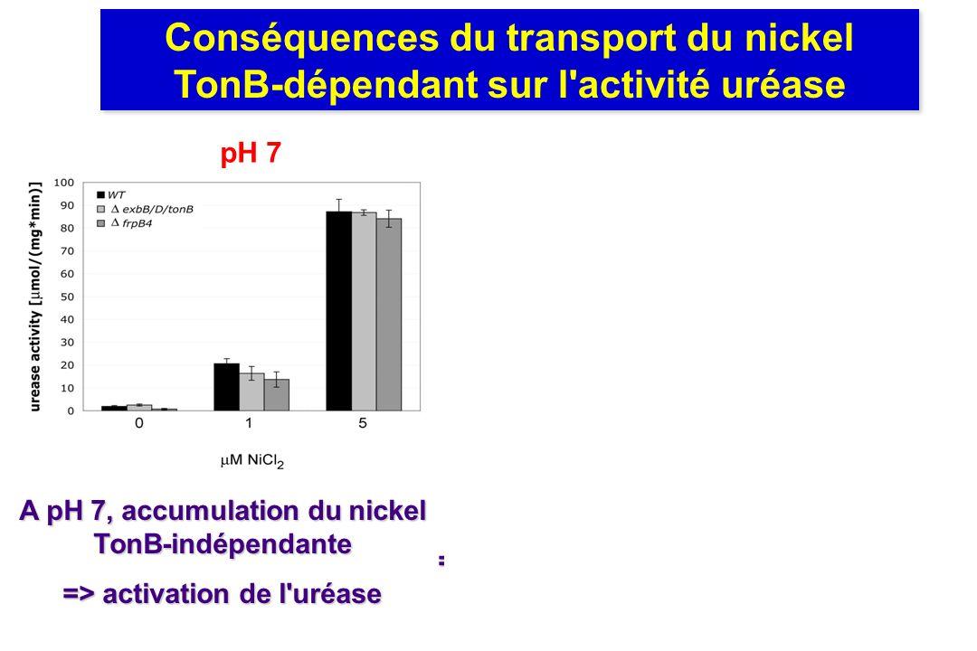 Conséquences du transport du nickel