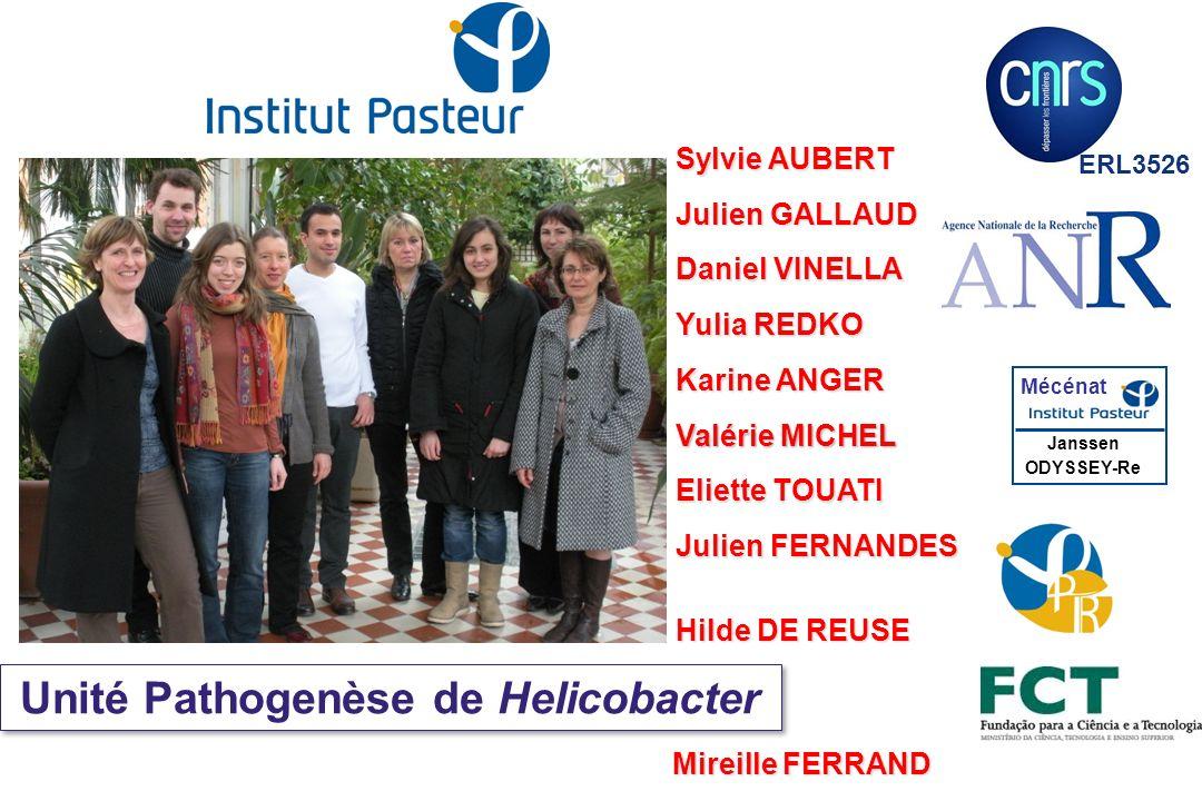 Unité Pathogenèse de Helicobacter