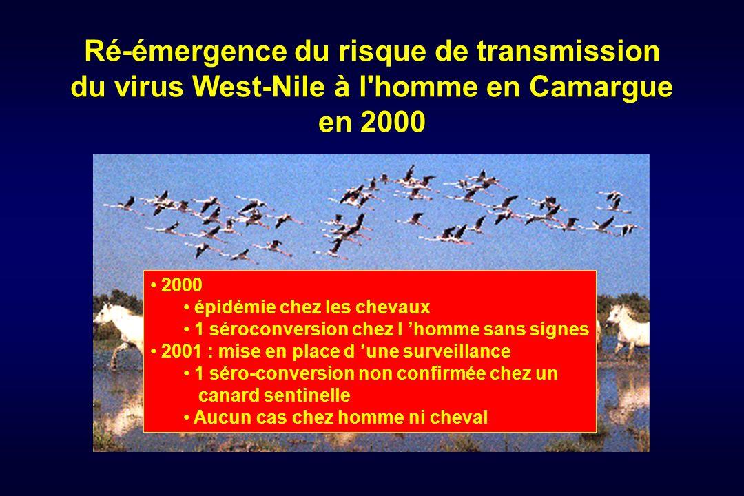 Ré-émergence du risque de transmission du virus West-Nile à l homme en Camargue en 2000