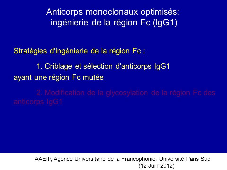 Anticorps monoclonaux optimisés: ingénierie de la région Fc (IgG1)