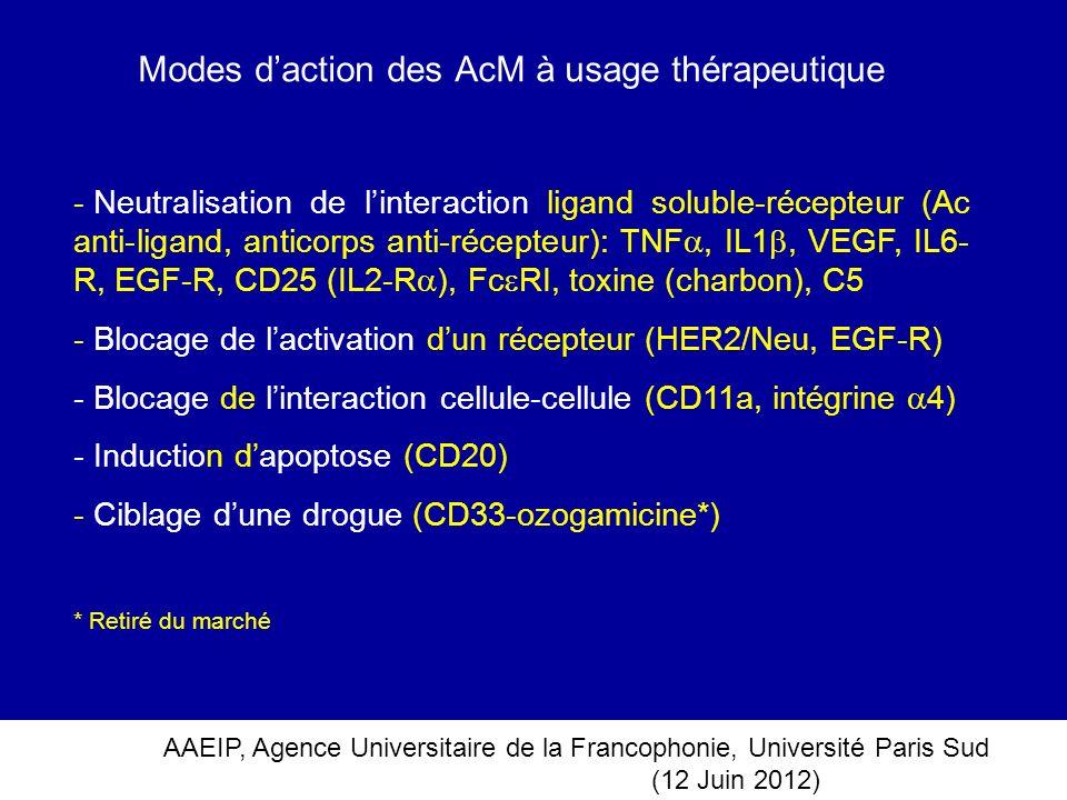 Modes d'action des AcM à usage thérapeutique