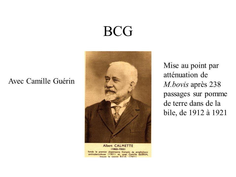 BCG Mise au point par atténuation de M.bovis après 238