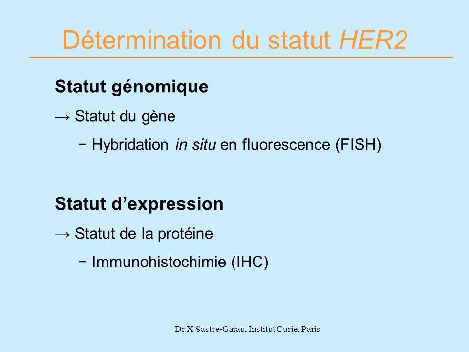 Détermination du statut HER2