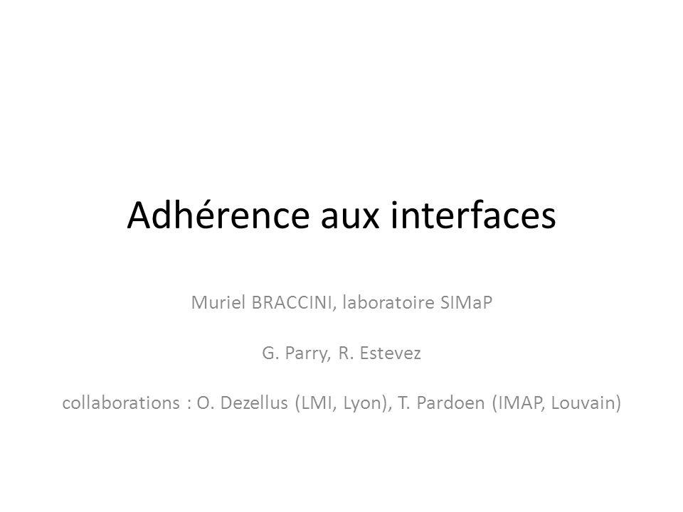 Adhérence aux interfaces