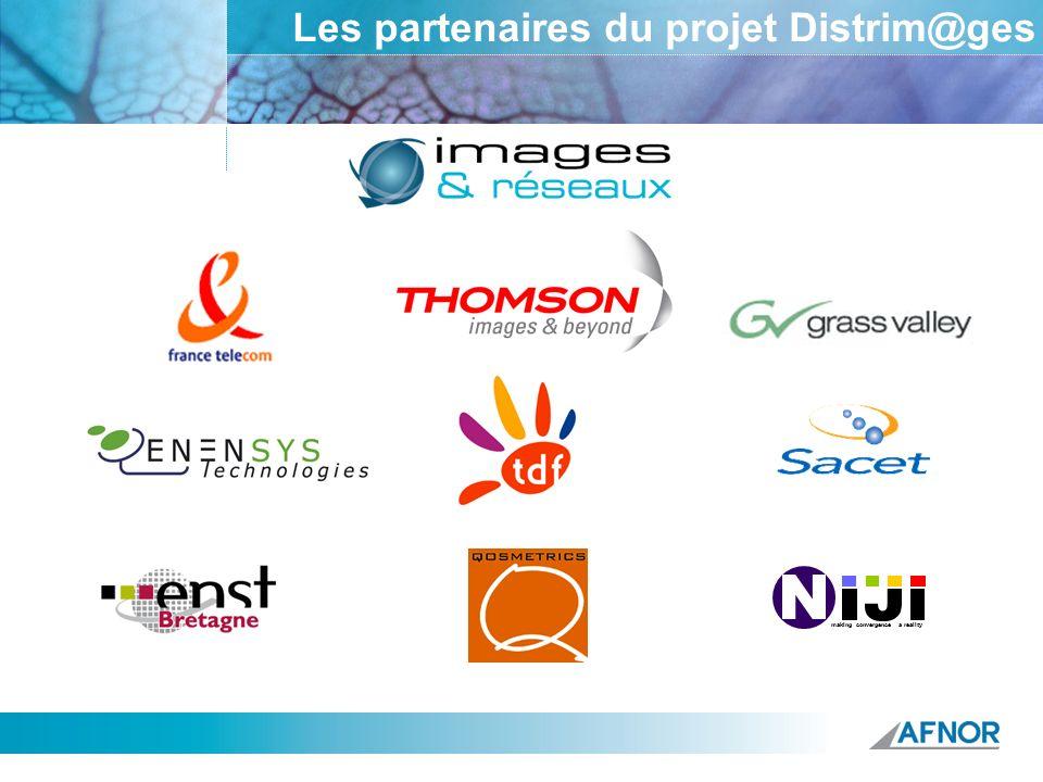 Les partenaires du projet Distrim@ges