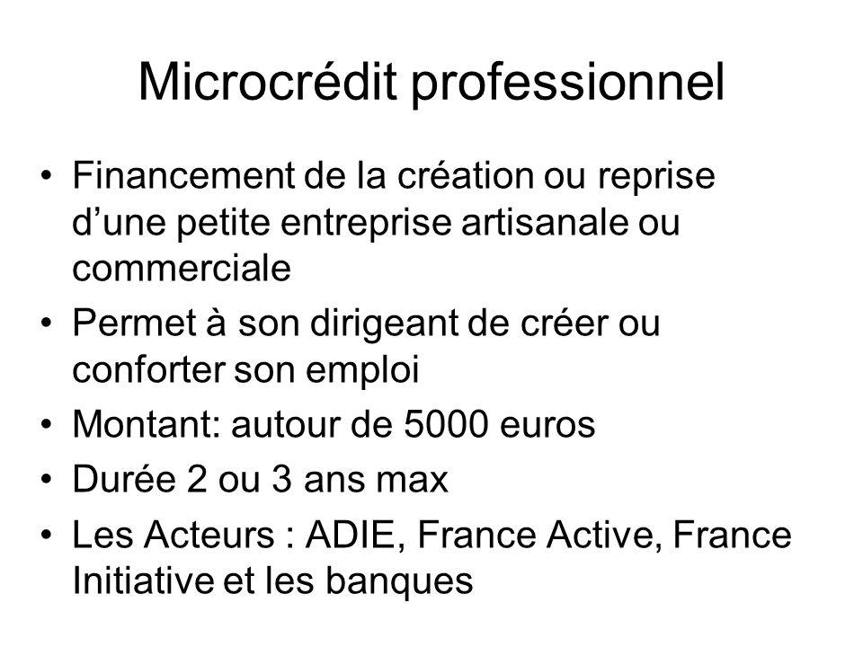 Microcrédit professionnel
