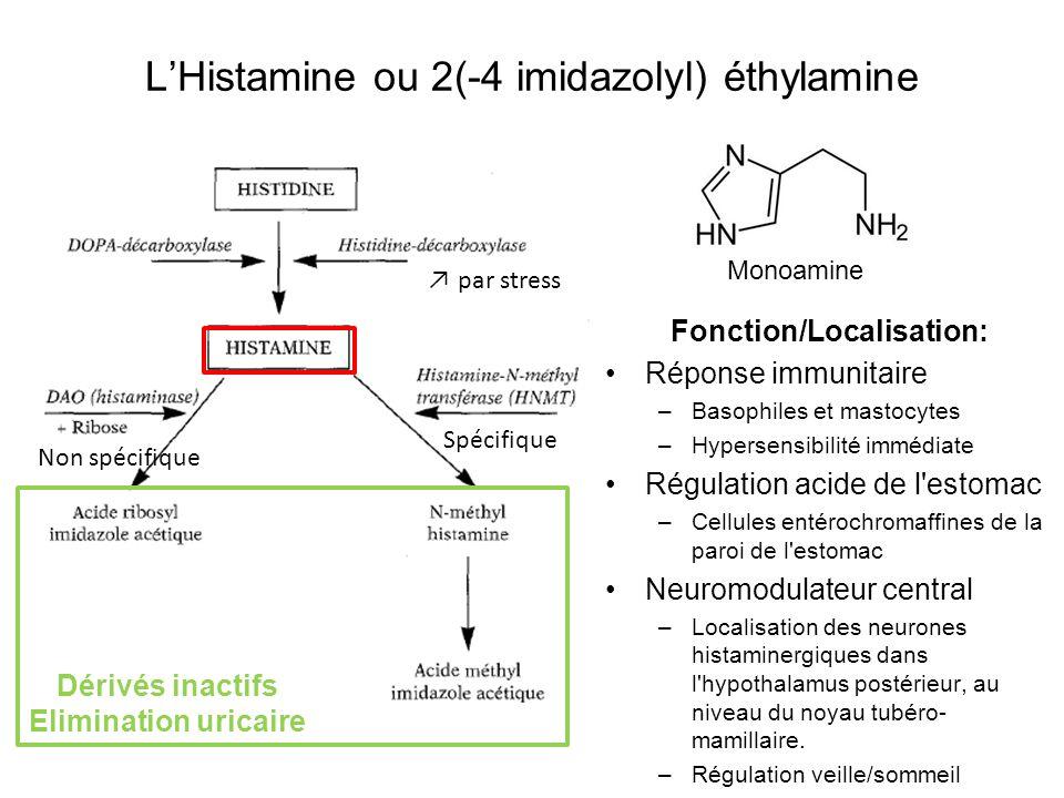 L'Histamine ou 2(-4 imidazolyl) éthylamine