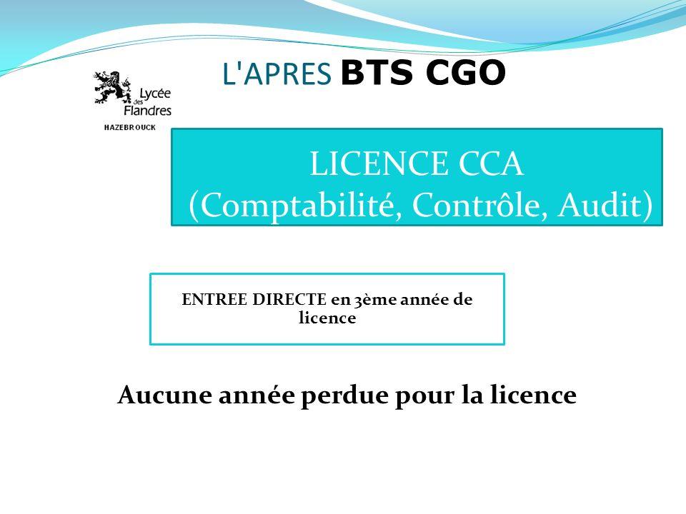 LICENCE CCA (Comptabilité, Contrôle, Audit)