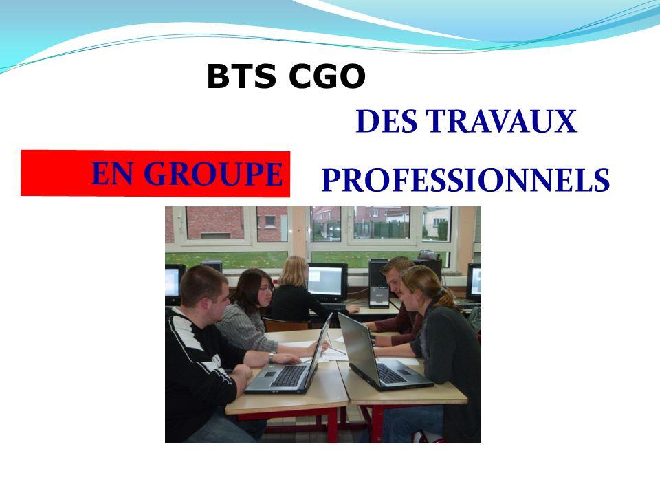 BTS CGO DES TRAVAUX PROFESSIONNELS EN GROUPE