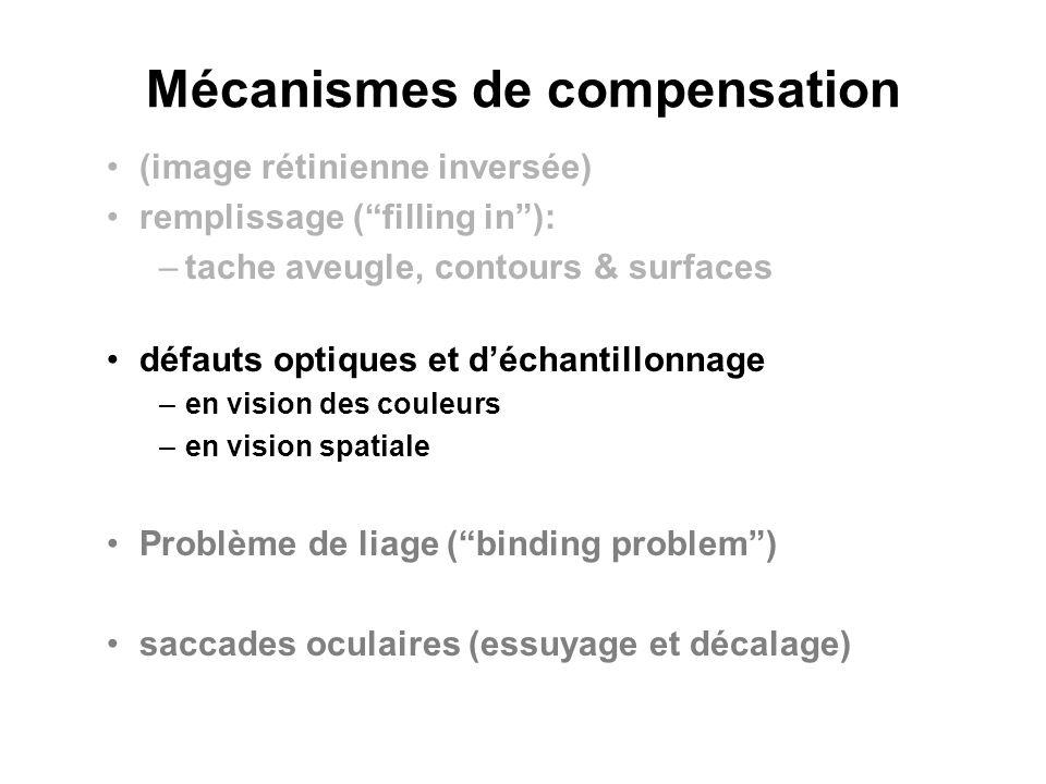 Mécanismes de compensation