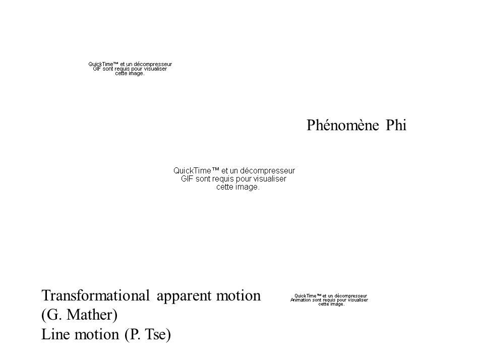 Phénomène Phi Transformational apparent motion (G. Mather) Line motion (P. Tse)