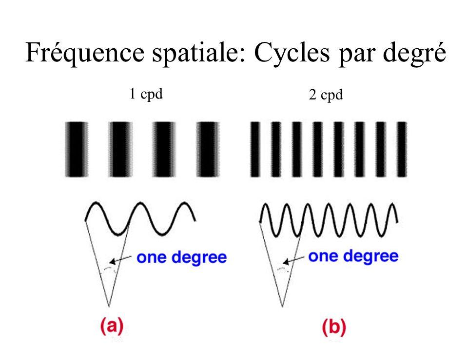 Fréquence spatiale: Cycles par degré