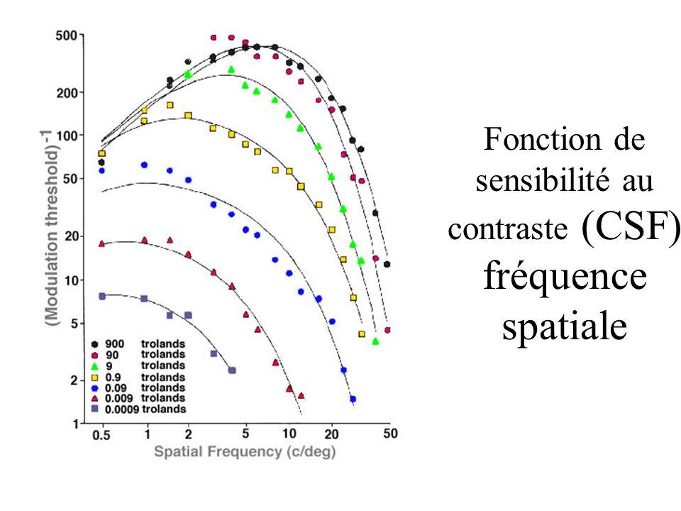 Fonction de sensibilité au contraste (CSF) fréquence spatiale