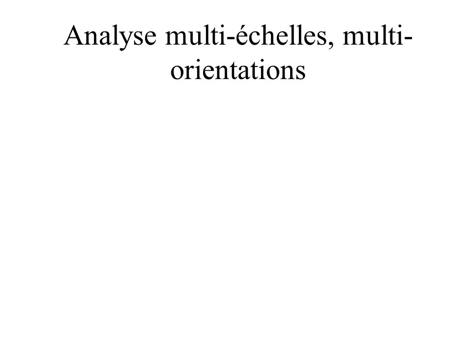 Analyse multi-échelles, multi-orientations