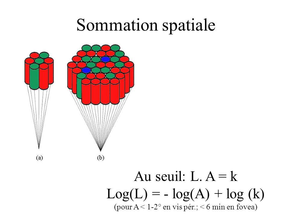 Sommation spatiale Au seuil: L. A = k Log(L) = - log(A) + log (k)