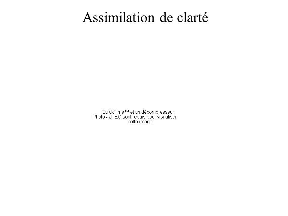 Assimilation de clarté