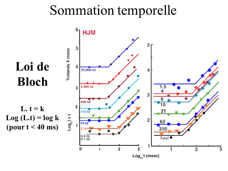 Sommation temporelle Loi de Bloch L. t = k Log (L.t) = log k