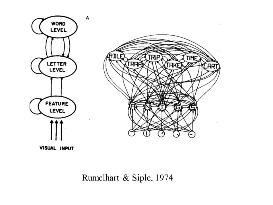 Rumelhart & Siple, 1974