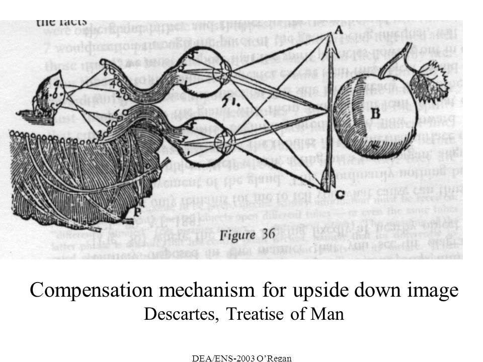Compensation mechanism for upside down image