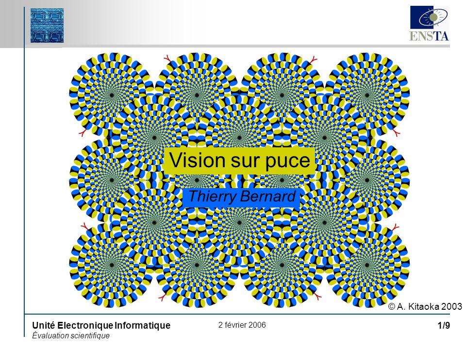 Vision sur puce Thierry Bernard © A. Kitaoka 2003