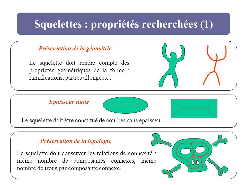 Squelettes : propriétés recherchées (1)